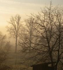 NebbialleRoasine